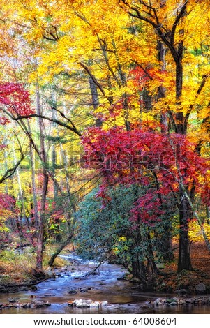 Beautiful Fall stream with orange, yellow, red and green trees in Great Smoky Mountains National Park - stock photo