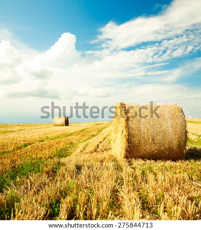 Beautiful Farm Scenery with Haystacks. Summer Field Landscape with Rolls and Sky. Focus on the Roll. Agriculture Concept. - stock photo