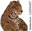 Beautiful feline illustration. Jaguar (Panthera onca). Raster version - stock photo