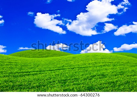 Beautiful field with a green grass and the beautiful sky on horizon with fluffy clouds - stock photo