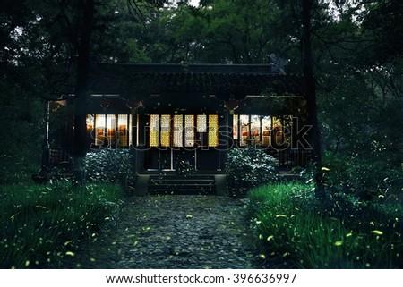 Beautiful fireflies in the night - stock photo