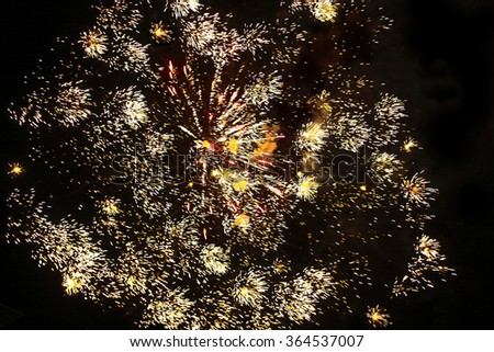 beautiful fireworks over night sky  - stock photo