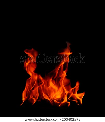 Beautiful flame fire on black background - stock photo