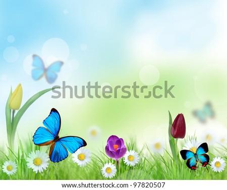 Beautiful floral design - stock photo