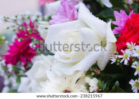 Beautiful flower bouquet, shallow depth of field (DOF) white rose in focus - stock photo