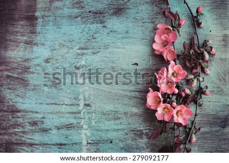 Beautiful flower on grunge wooden table - stock photo