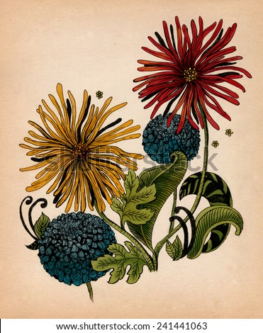 Beautiful flowers hand-drawn colorful and ink graphic illustration. Gerbera flower and garlic flower on kraft paper - stock photo