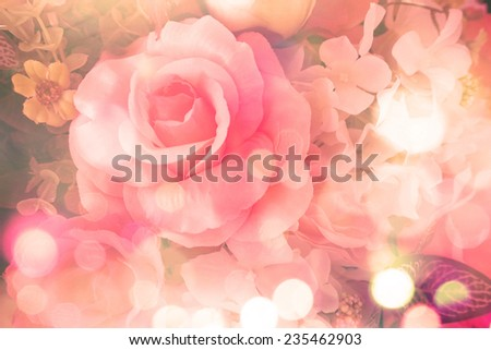 beautiful flowers with pale red petals - stock photo