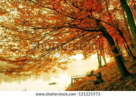 Beautiful foggy and cold morning at the lake in October. - stock photo