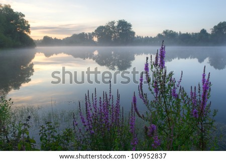 Beautiful foggy sunrise on a lake in the Netherlands. - stock photo