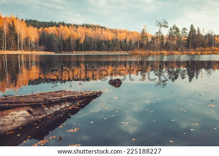 "Beautiful forest and old wooden pier on tranquil lake with trees reflection, autumn landscape. National Park ""Narochansky"". Blue lakes. Belarus. Retro stylized. Toning effect.   - stock photo"