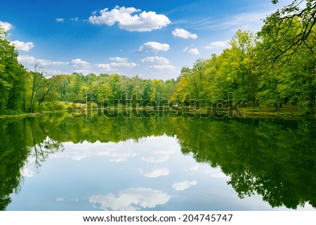Beautiful forest with reflection in the water. Beauty nature - stock photo