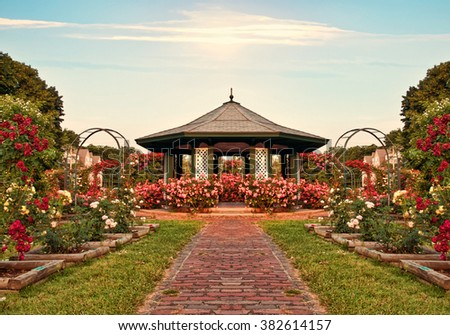 beautiful formal rose garden late in the day - stock photo