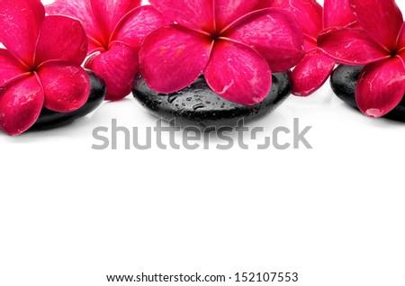 Beautiful Frangipani flowers with zen stone - stock photo