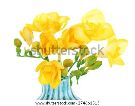 Beautiful freesia in vase isolated on white - stock photo