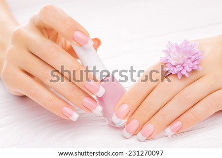 beautiful french manicure with chrysanthemum on white - stock photo