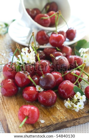 beautiful  fresh cherry in a board with white cup - stock photo