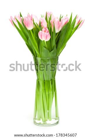 Beautiful fresh pink tulips with white background - stock photo