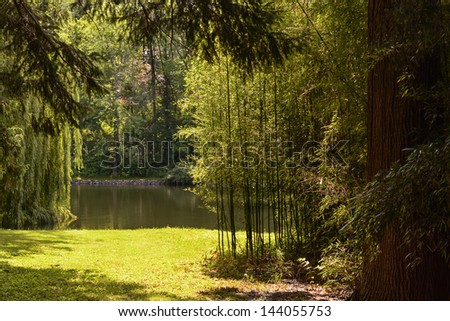 Beautiful garden with mature trees and bamboo surrounding a pond. - stock photo