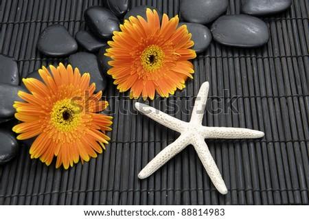 Beautiful gerbera flower and zen stones with starfish on bamboo mat - stock photo