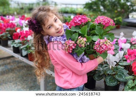Beautiful girl holding flower pot with red hydrangea in the greenhouse - stock photo