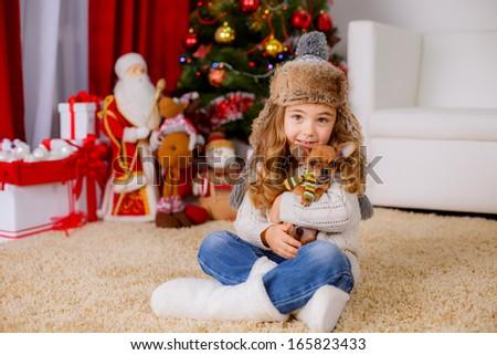 beautiful girl with chihuahua dog sitting near the Christmas tree - stock photo