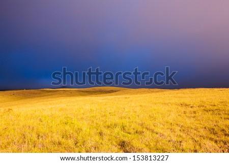 Beautiful Golden Meadow at Sunset, Dark Dramatic Stormy Sky - stock photo