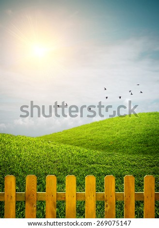 Beautiful grass hills with birds and a wooden fence under sunny weather - stock photo