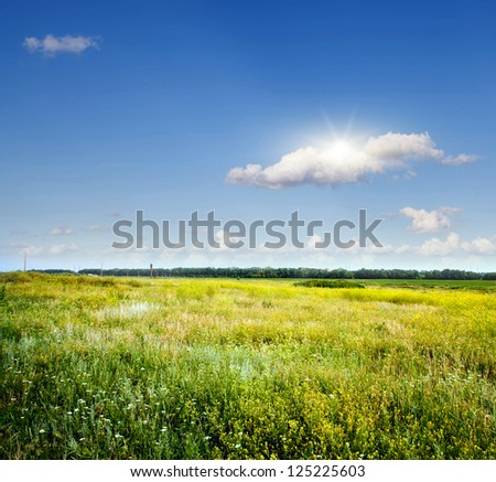 beautiful green field during springtime - stock photo