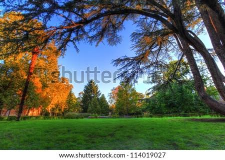 Beautiful green garden - stock photo