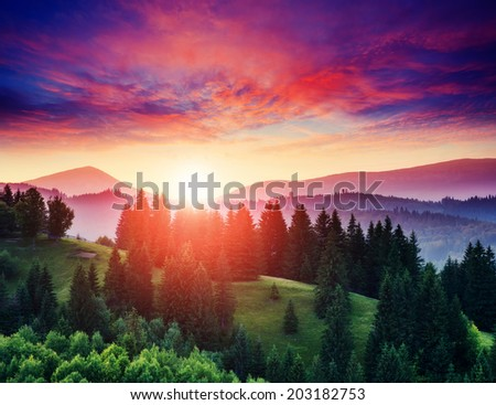 Beautiful green hills at twilight. Dramatic red sky. Carpathian, Ukraine, Europe. Beauty world. - stock photo