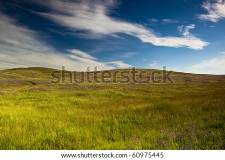 Beautiful green meadow with a great cloudy sky - stock photo