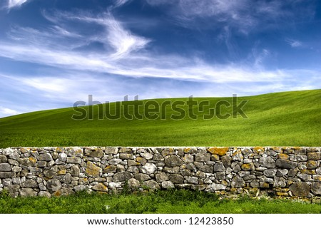 Beautiful green meadow with a old Stone wall - stock photo