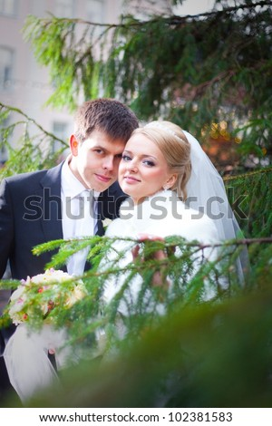 beautiful groom and the bride in the city near a Christmas tree - stock photo