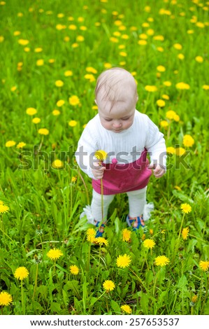 Beautiful happy little baby girl walking on a green meadow with yellow flowers dandelions on the nature in the park - stock photo