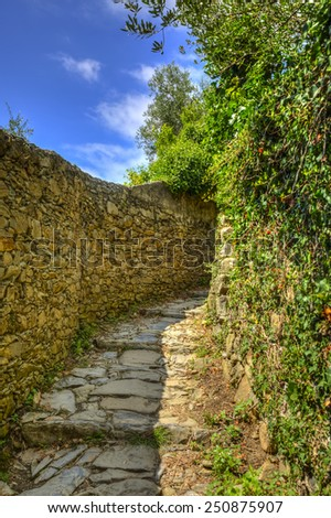 Beautiful hiking footpath connecting the traditional villages from Cinque Terre National Park on the Italian Riviera. - stock photo
