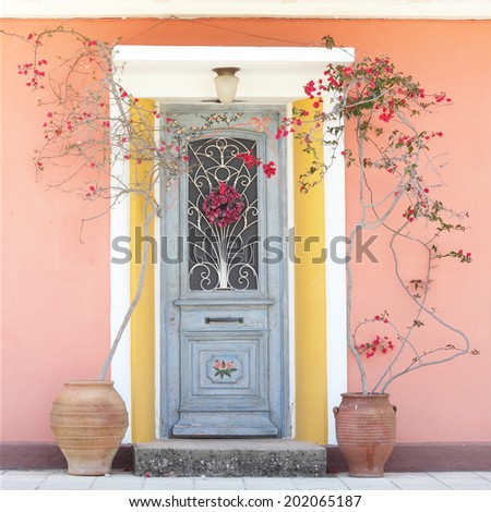 Beautiful homely house decorative door with blooming red roses - stock photo