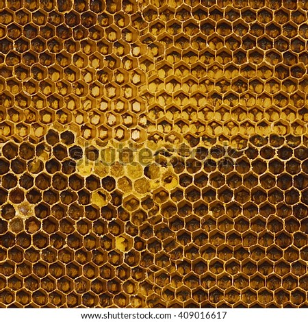 beautiful honeycomb , seamless honeycomb pattern - stock photo