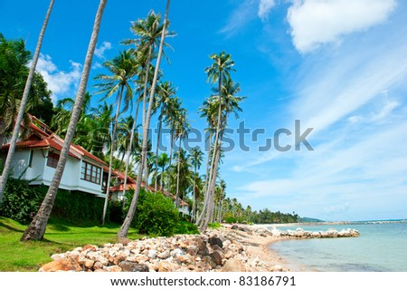 Beautiful house with palm trees on the beach - stock photo