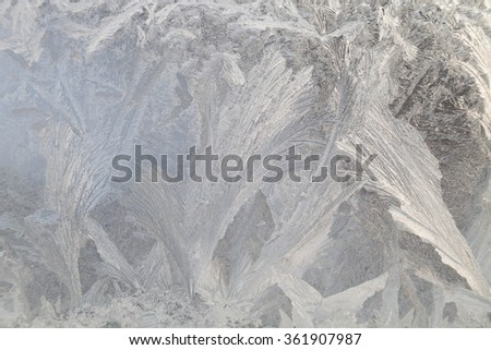 Beautiful ice paintings on glass - for background - stock photo