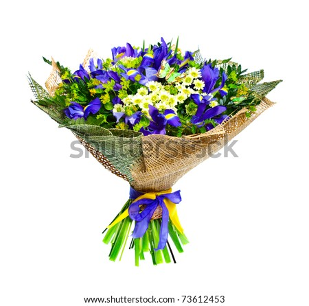 Beautiful irises and chrysanthemum isolated on white background - stock photo