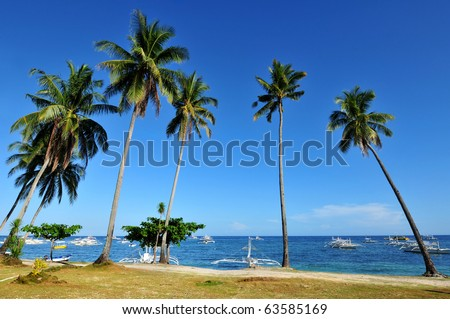 Beautiful island beach in the tropics - stock photo