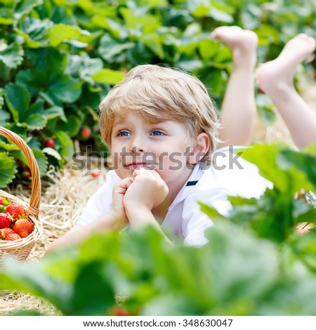 Beautiful kid boy having fun with picking strawberries on organic bio berry farm in summer, on warm sunny day. Harvest fields in Germany. Healthy food for children. - stock photo