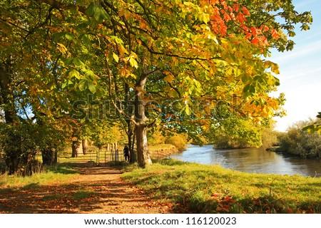 Beautiful lake in Autumn time, Scotland, UK - stock photo