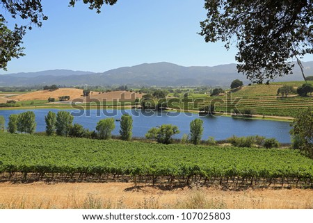 Beautiful lake in Napa Valley, California - stock photo