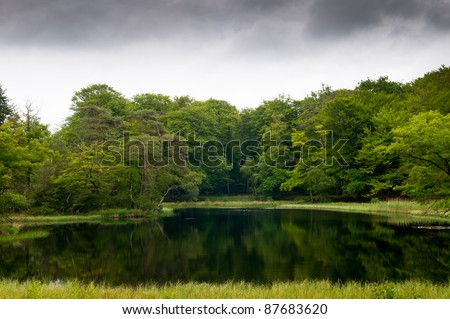 Beautiful lake landscape in a forest - stock photo