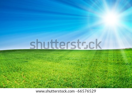 beautiful landscape, green grass, blue sky - stock photo