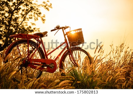 beautiful landscape image with Bicycle  at sunset - stock photo