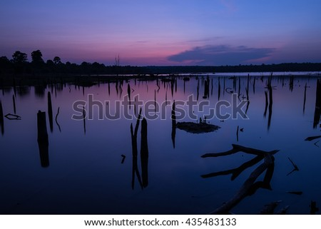 Beautiful landscape image with dead trees silhouette and reflection  at dark over lake - stock photo