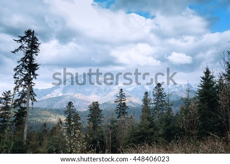 Beautiful landscape in the mountains - stock photo